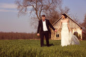 Bride and groom at countryside — Stock Photo