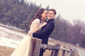 Bride and groom embracing near forest — Stock Photo