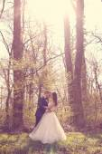 Bride and groom in a beautiful forest — Stock Photo