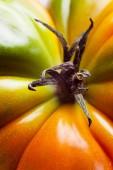トマトのマクロ — ストック写真