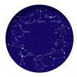 Constellation of  12 signs of the zodiac — Stock Vector #67981113