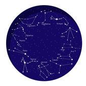 12 zodyak işaretleri takımyıldızı — Stok Vektör
