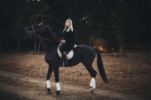Beautiful young blond woman with a horse — Stock Photo