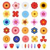 Flowers and Petals Vector Set — Vecteur