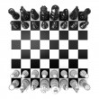 Chess Board with all chess pieces, isolated on white background. Top view — Stock Photo #69076817