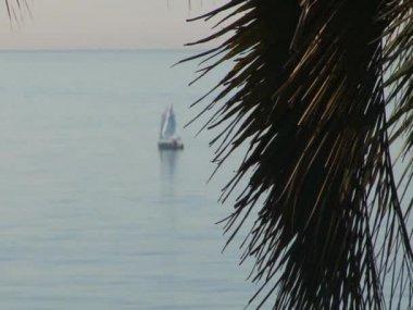 Sailing regatta in the waters of the Black Sea — Stock video