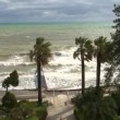 Hurricane wind rustles the leaves of palm trees along the seaside promenade during a storm — Stock Video #71458329