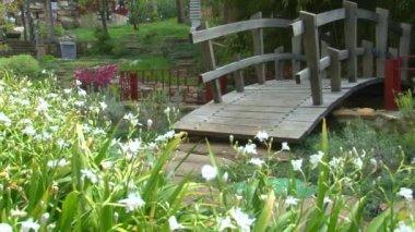 在植物园的日本花园全景 — 图库视频影像