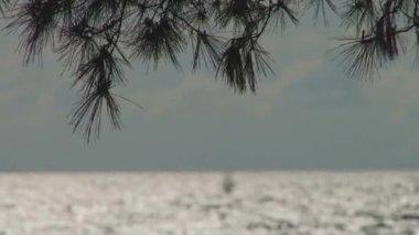 Black Sea landscape near the city of Sochi — Стоковое видео