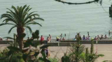 Plot seaside promenade of the beach of Sochi, Russia — Vídeo de Stock