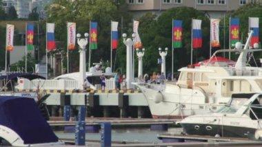View seaport city of Sochi, Russia — Stock Video