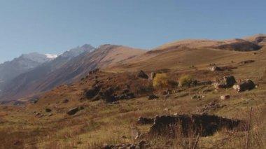 Nature Kurtat Gorge in North Ossetia, Caucasus, Russia. — Stockvideo