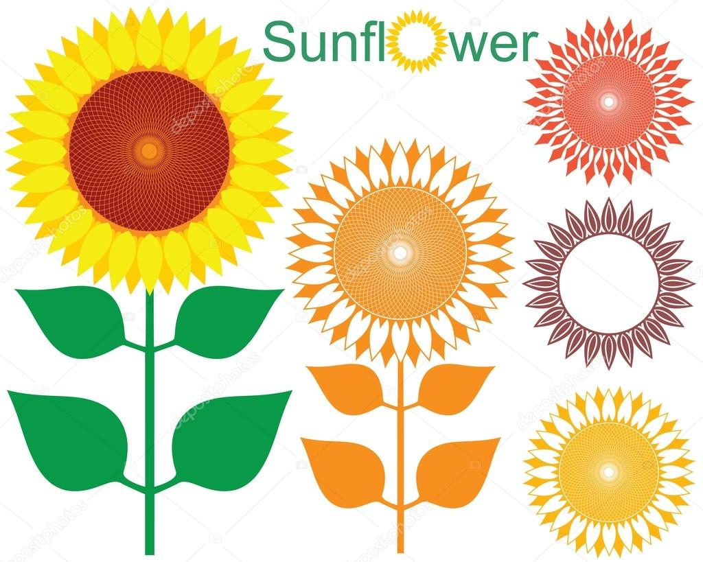 Mesmerizing sunflower vector pictures