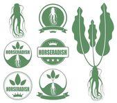 Horseradish icons set — Stock Vector