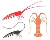 Spiny Lobster  icons set — Stock Vector