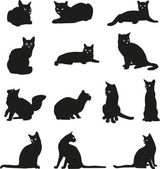 Cats, different graphic options images of cats — Stock Vector