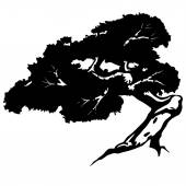 Bonsai silhouette complex boughs — Stock Vector