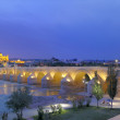 Cathedral Mezquita and Roman bridge at sunset, Guadalquivir river, Cordoba, Andalusia, Spain — Stock Photo #69688943