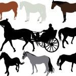 Horses vector sihouette — Stock Vector #69554599