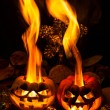 Halloween - old jack-o-lantern on black background — Stock Photo #68744159