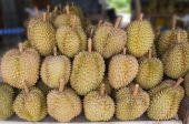 Durian in the market — Stock Photo