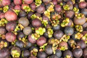 Queen of fruit, Mangosteen of Thailand — Fotografia Stock