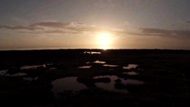 Aerial shot of a calm coastline during sunrise — Stock Video