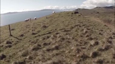 Aerial shot from the Isle of Skye in Scotland — Stock Video