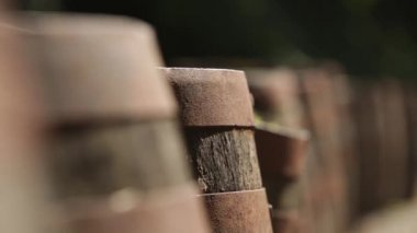 Kaymak atış eski rustik viski varil dışında — Stok video