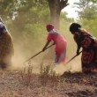 African ladies manually working the land, Taveta, Kenya, March 2013 — Stock Video #69133579