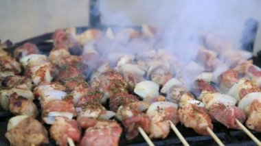 High definition video of pork and chicken skewers on barbecue grill — Stock Video