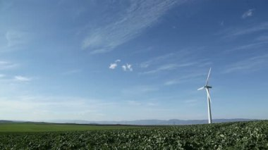Wind turbine on green field — Stock Video