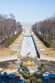 Samson fountain in the city Park of Peterhof. — Stock Photo