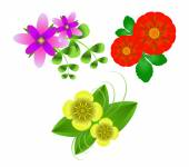 Flowers on  white background — Stock Vector