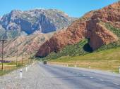 Road to the mountains — Stock Photo