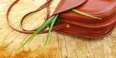 Women's handbag on a stump — Stock Photo