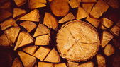 Background of old logs — Stock Photo