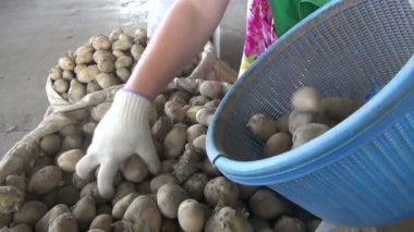 Selling potatoes at the bazaar — Stockvideo