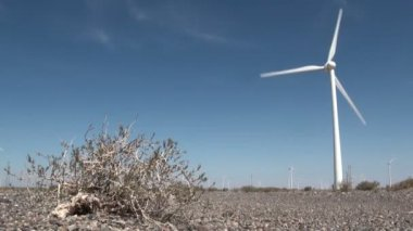Windmill in a dry desert — Stock Video