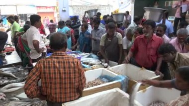 People buy fish at market — Stock Video