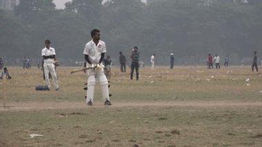 Men play cricket — Stock Video
