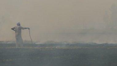 Farmer looks at his burning field — Stock Video