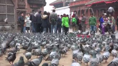 Tourists gather at Durbar Square — Stock Video