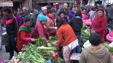 People do groceries at a farmers market — Wideo stockowe