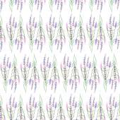 Pattern with lavender — Stock Photo