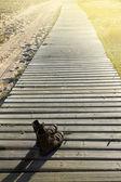 Buty na drewno iść ścieżką w świetle lato — Zdjęcie stockowe