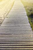 Wood walk path in summer light — Stock Photo