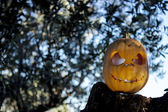 Halloween scary pumpkin in the gren tree brushwood — Stock Photo