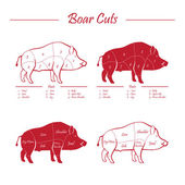 Boar meat cut diagram - elements red on white — Stock Vector