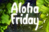 Aloha Friday — Stock Photo